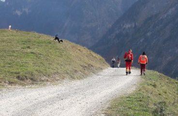 Gemeinsames Training mit der Rettungshundebrigade Vorarlberg